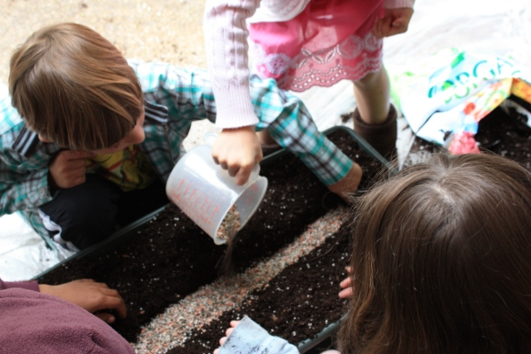 Jacob Religious School Students planting in self watering container